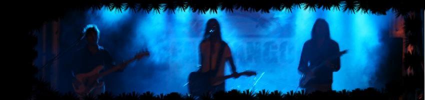 Slide foto zucca1l